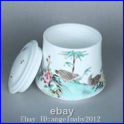 3.7 Porcelain Chinese Antique qianlong famille rose flower bird bamboo Jar pot