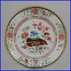 Antique Yongzheng/Qianlong Famille Rose Plate with Flowers zh