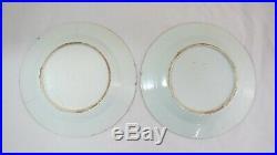 Pair Plates Chinese Porcelain Famille Rose Qianlong Period Diameter-22.5cm