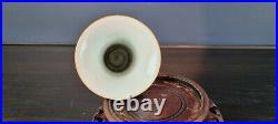 Vase China Famille Rose Qianlong (1736-1795.)